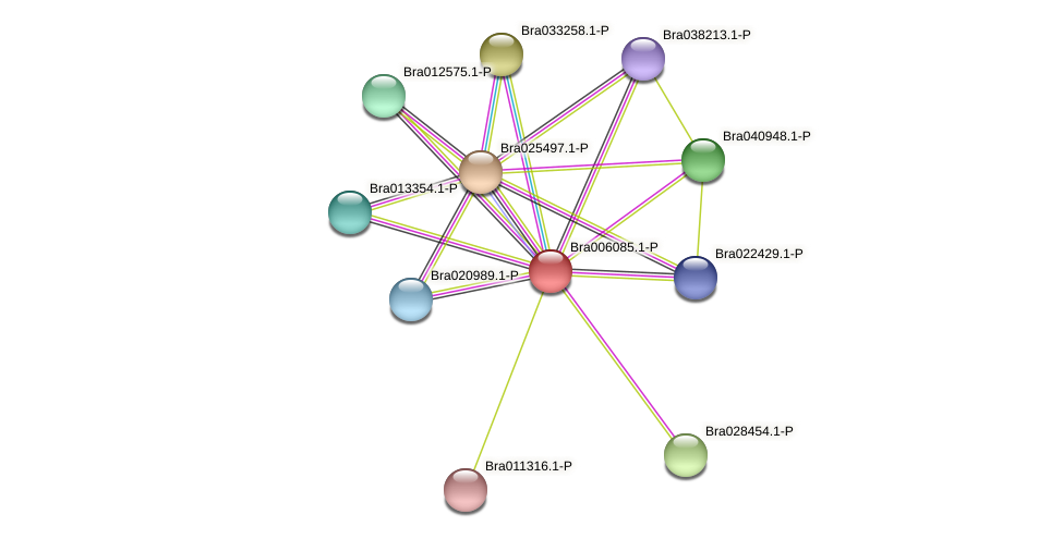 Bra006085 protein (Brassica rapa) - STRING interaction network