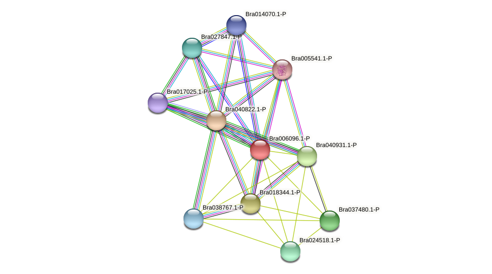 Bra006096 protein (Brassica rapa) - STRING interaction network