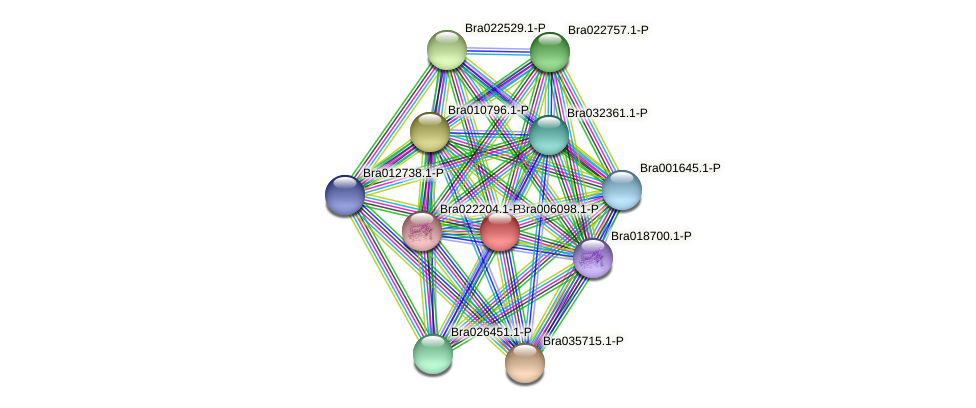 Bra006098 protein (Brassica rapa) - STRING interaction network