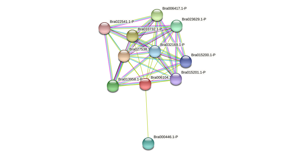 Bra006104 protein (Brassica rapa) - STRING interaction network