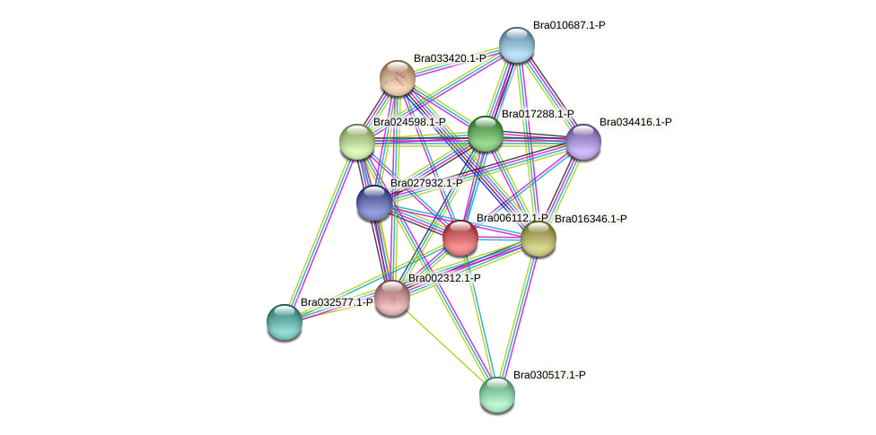 Bra006112 protein (Brassica rapa) - STRING interaction network