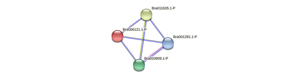 Bra006121 protein (Brassica rapa) - STRING interaction network