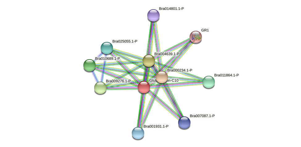 Bra006132 protein (Brassica rapa) - STRING interaction network