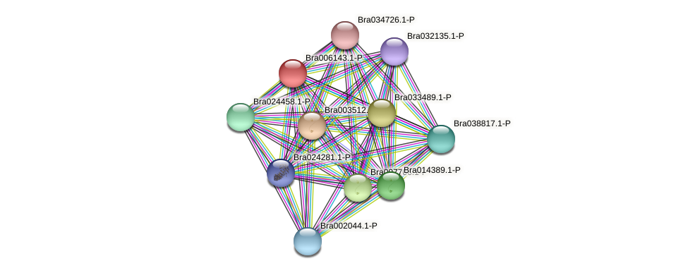 Bra006143 protein (Brassica rapa) - STRING interaction network