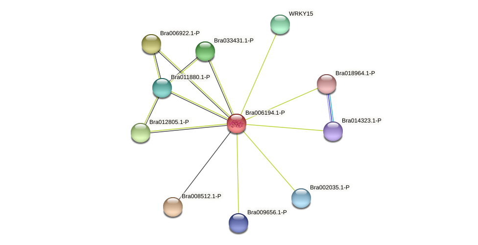 Bra006194 protein (Brassica rapa) - STRING interaction network