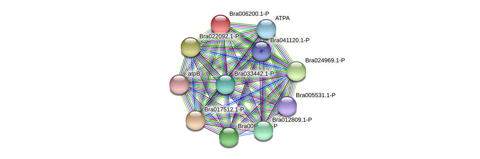 Bra006200 protein (Brassica rapa) - STRING interaction network