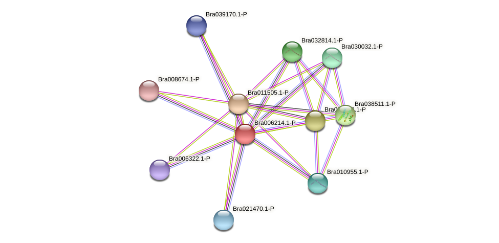 Bra006214 protein (Brassica rapa) - STRING interaction network