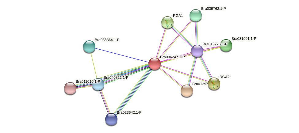 Bra006247 protein (Brassica rapa) - STRING interaction network
