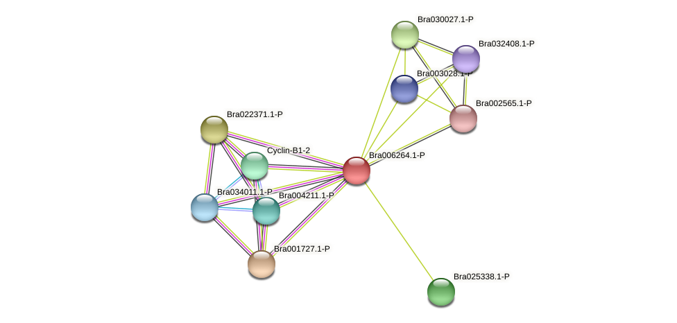 Bra006264 protein (Brassica rapa) - STRING interaction network