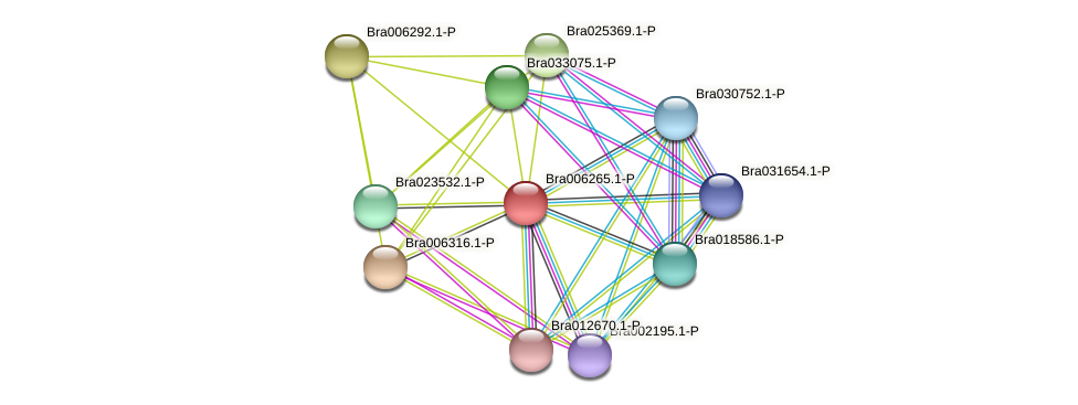 Bra006265 protein (Brassica rapa) - STRING interaction network