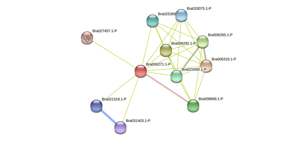 Bra006271 protein (Brassica rapa) - STRING interaction network