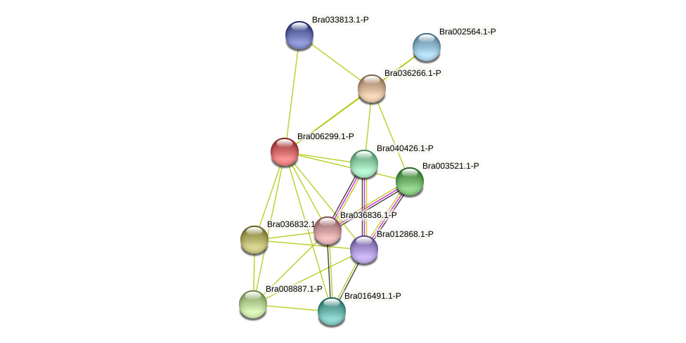 Bra006299 protein (Brassica rapa) - STRING interaction network