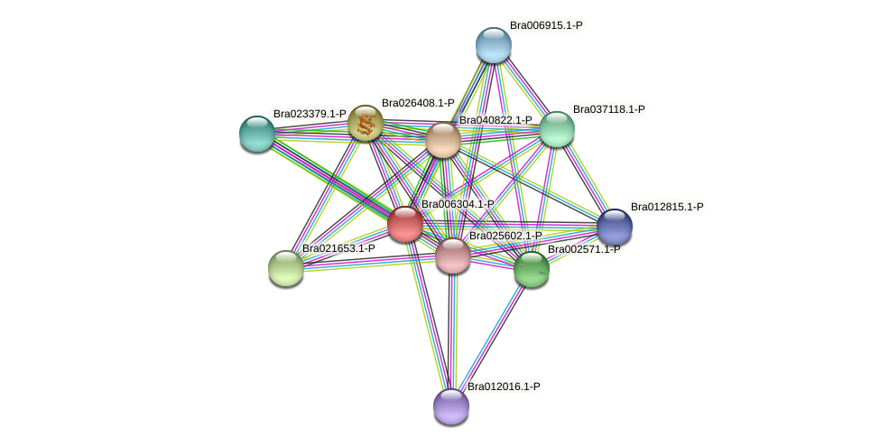 Bra006304 protein (Brassica rapa) - STRING interaction network