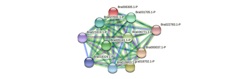 Bra006305 protein (Brassica rapa) - STRING interaction network