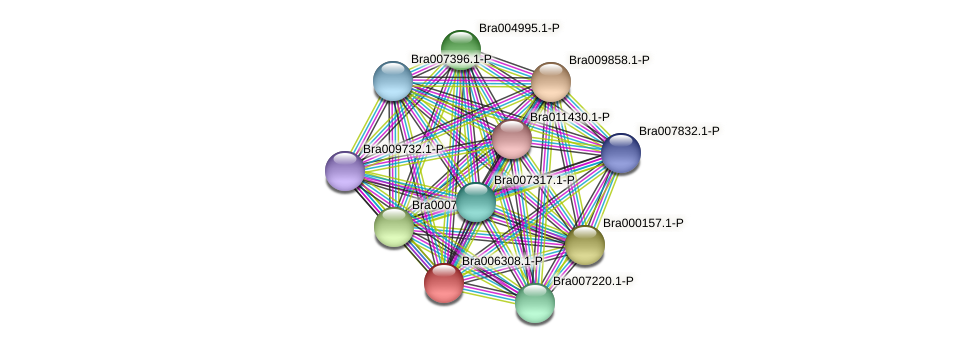 Bra006308 protein (Brassica rapa) - STRING interaction network