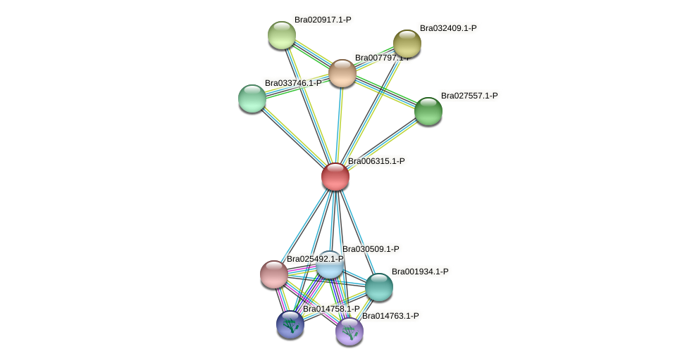 Bra006315 protein (Brassica rapa) - STRING interaction network