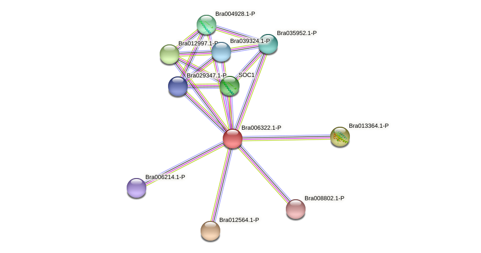 Bra006322 protein (Brassica rapa) - STRING interaction network
