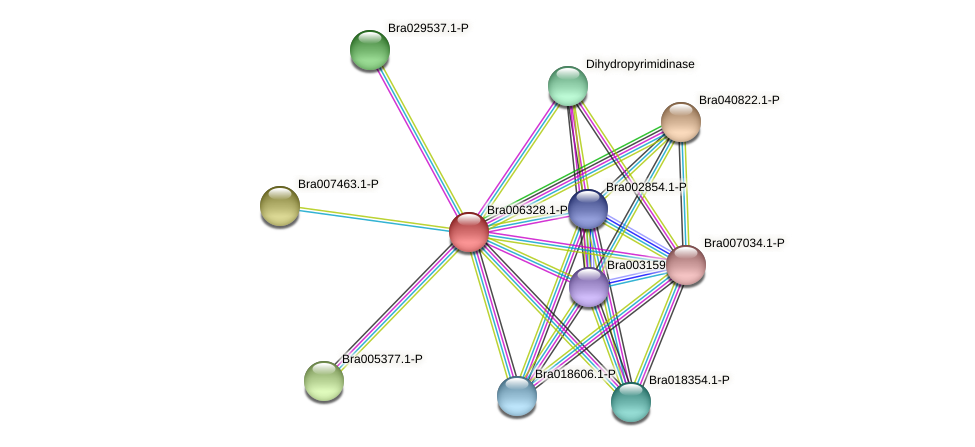Bra006328 protein (Brassica rapa) - STRING interaction network