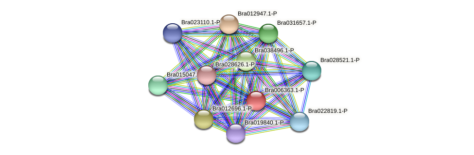 Bra006363 protein (Brassica rapa) - STRING interaction network