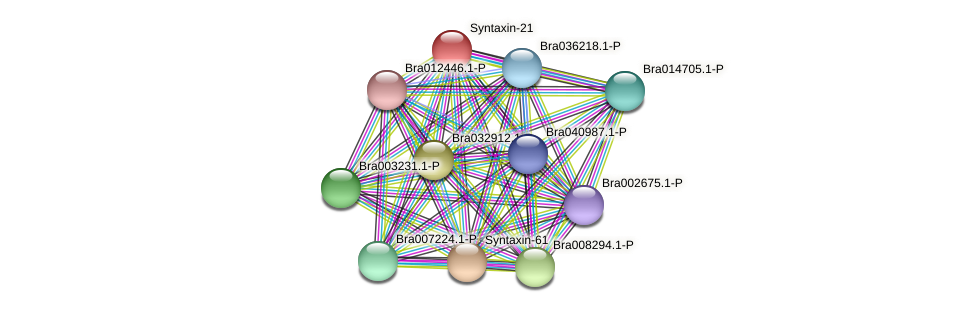 Bra006372 protein (Brassica rapa) - STRING interaction network