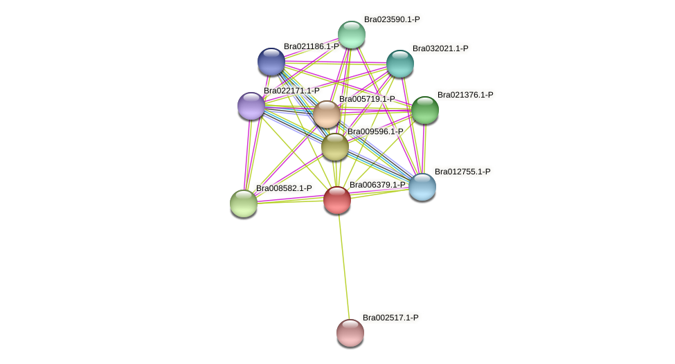 Bra006379 protein (Brassica rapa) - STRING interaction network