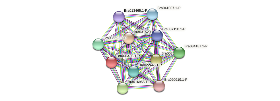 Bra006408 protein (Brassica rapa) - STRING interaction network
