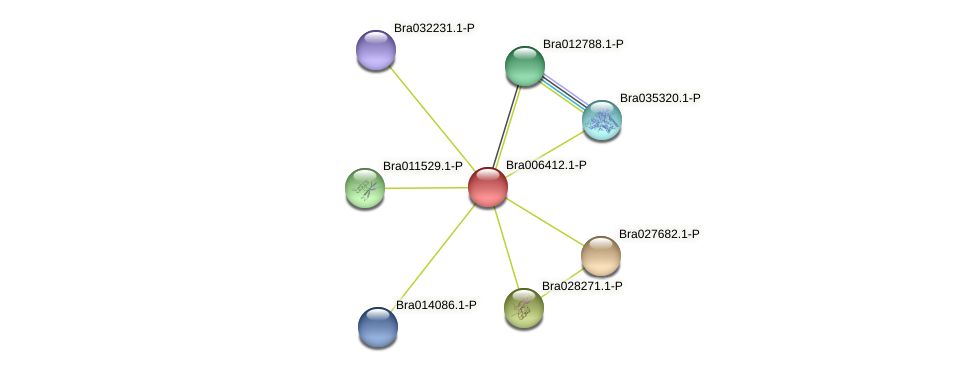 Bra006412 protein (Brassica rapa) - STRING interaction network
