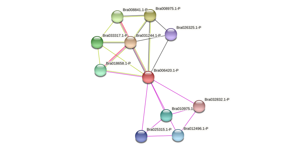 Bra006420 protein (Brassica rapa) - STRING interaction network