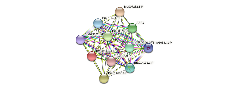 Bra006425 protein (Brassica rapa) - STRING interaction network