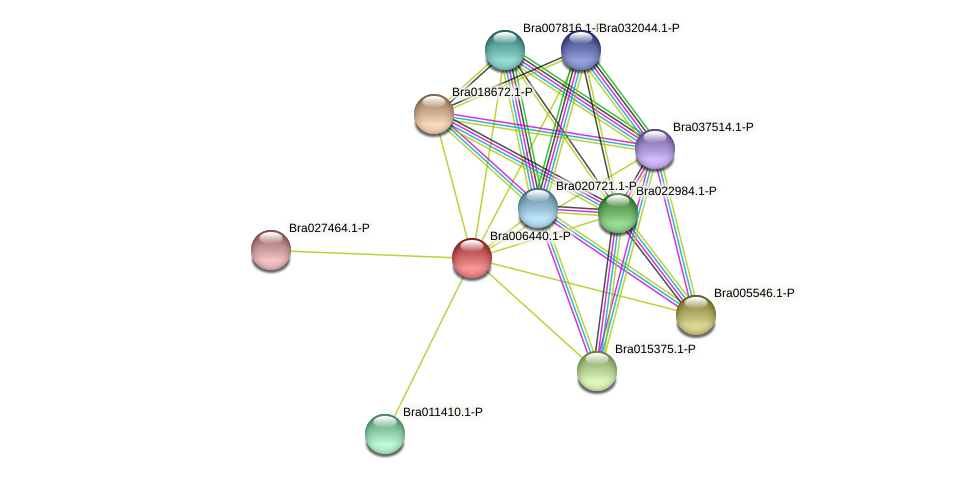 Bra006440 protein (Brassica rapa) - STRING interaction network