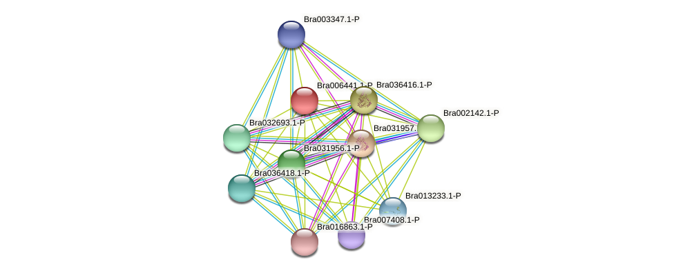 Bra006441 protein (Brassica rapa) - STRING interaction network