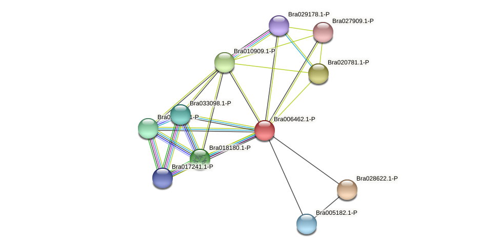 Bra006462 protein (Brassica rapa) - STRING interaction network