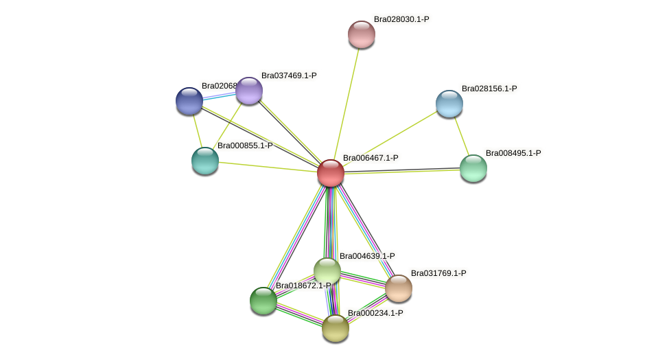 Bra006467 protein (Brassica rapa) - STRING interaction network