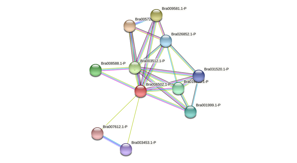 Bra006502 protein (Brassica rapa) - STRING interaction network