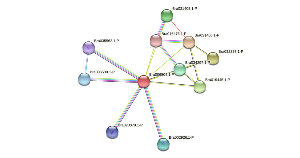 Bra006504 protein (Brassica rapa) - STRING interaction network