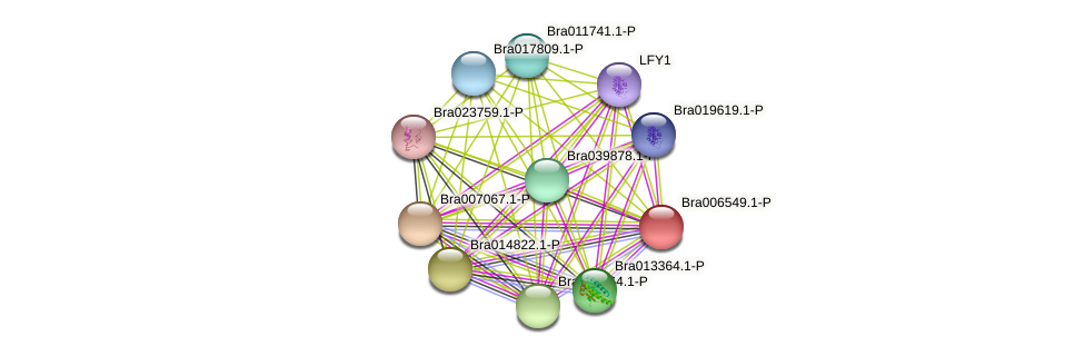 Bra006549 protein (Brassica rapa) - STRING interaction network