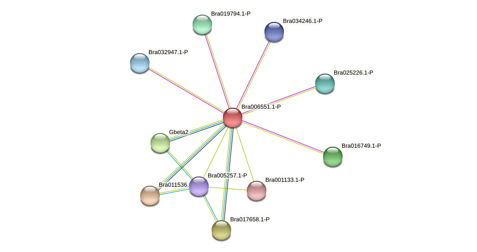 Bra006551 protein (Brassica rapa) - STRING interaction network