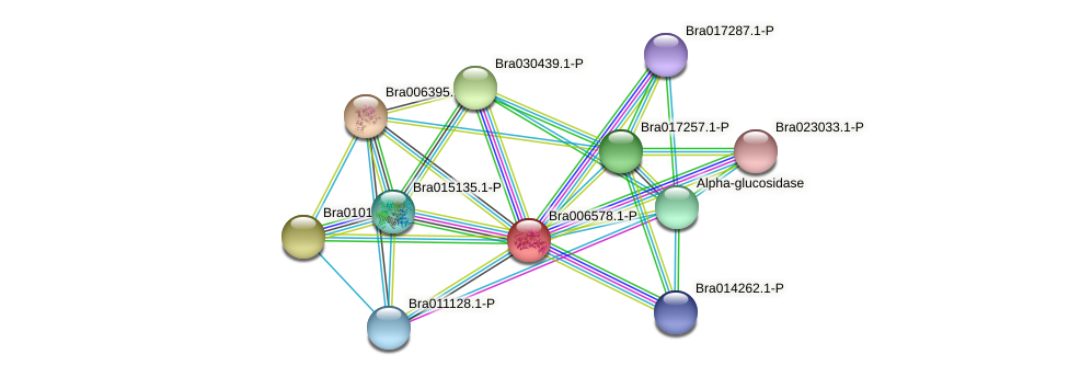 Bra006578 protein (Brassica rapa) - STRING interaction network