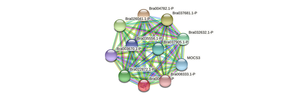 Bra006590 protein (Brassica rapa) - STRING interaction network