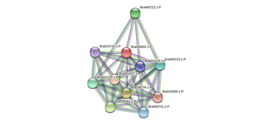 Bra006602 protein (Brassica rapa) - STRING interaction network
