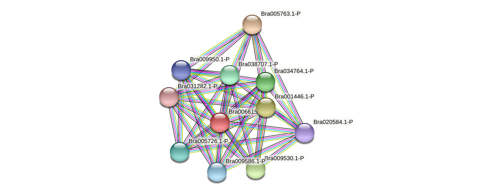 Bra006615 protein (Brassica rapa) - STRING interaction network