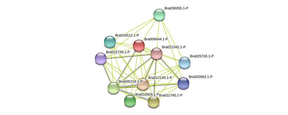 Bra006644 protein (Brassica rapa) - STRING interaction network