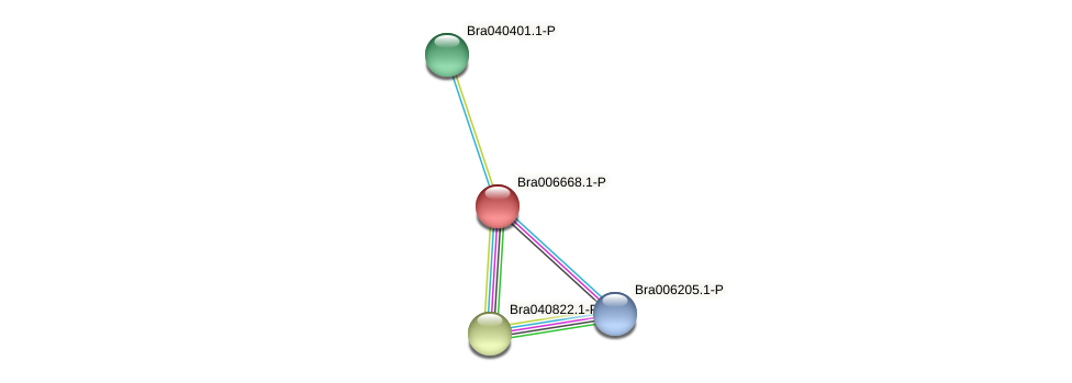 Bra006668 protein (Brassica rapa) - STRING interaction network
