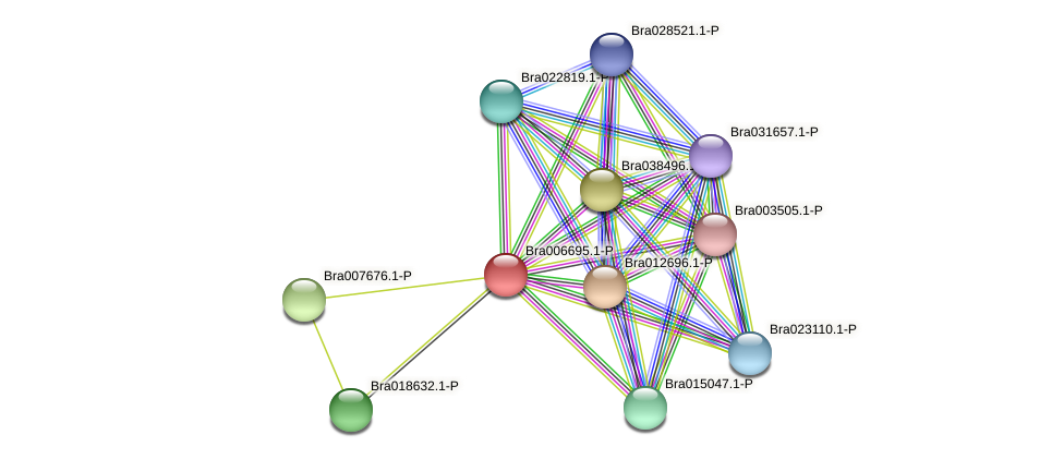 Bra006695 protein (Brassica rapa) - STRING interaction network