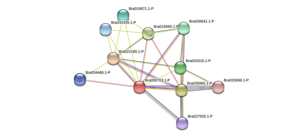Bra006703 protein (Brassica rapa) - STRING interaction network