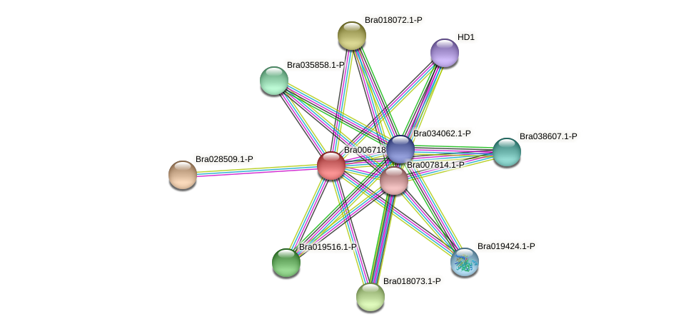 Bra006718 protein (Brassica rapa) - STRING interaction network
