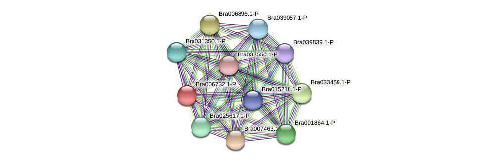 Bra006732 protein (Brassica rapa) - STRING interaction network
