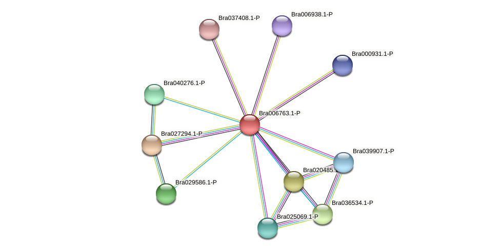 Bra006763 protein (Brassica rapa) - STRING interaction network