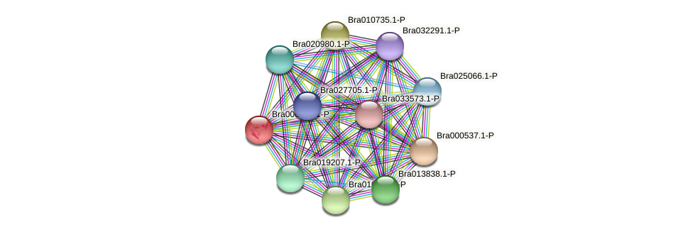 Bra006775 protein (Brassica rapa) - STRING interaction network