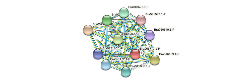 Bra006777 protein (Brassica rapa) - STRING interaction network